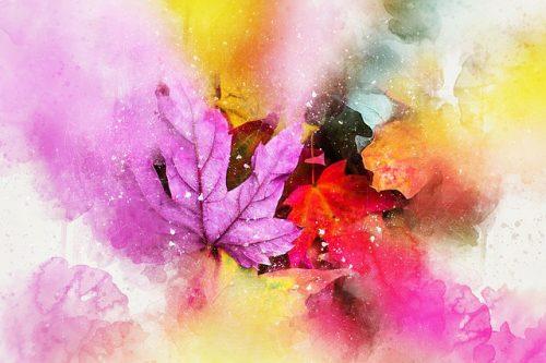 art-leaves-fall-autumn